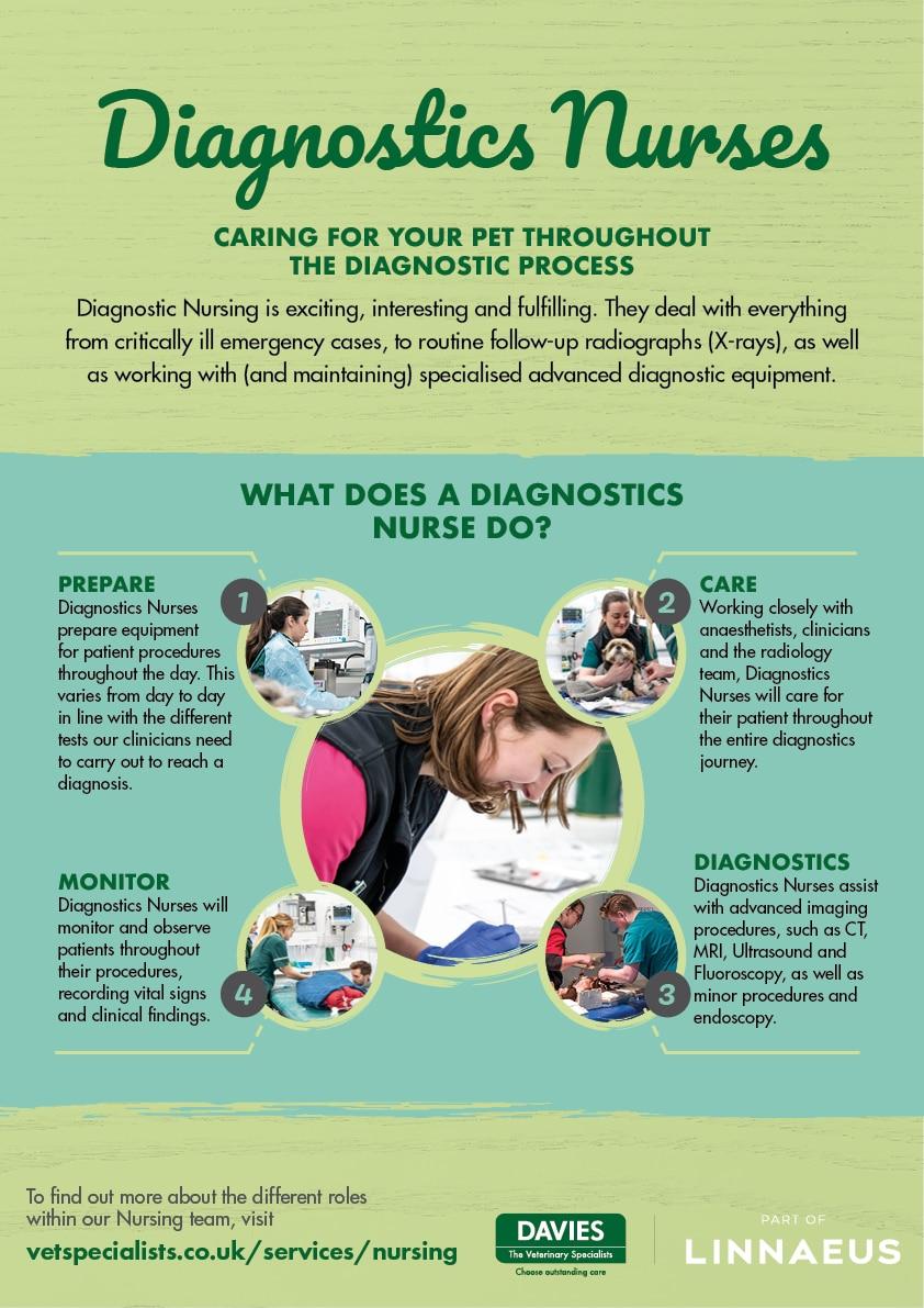 Davies Veterinary Specialists Diagnostics Nurses infographic