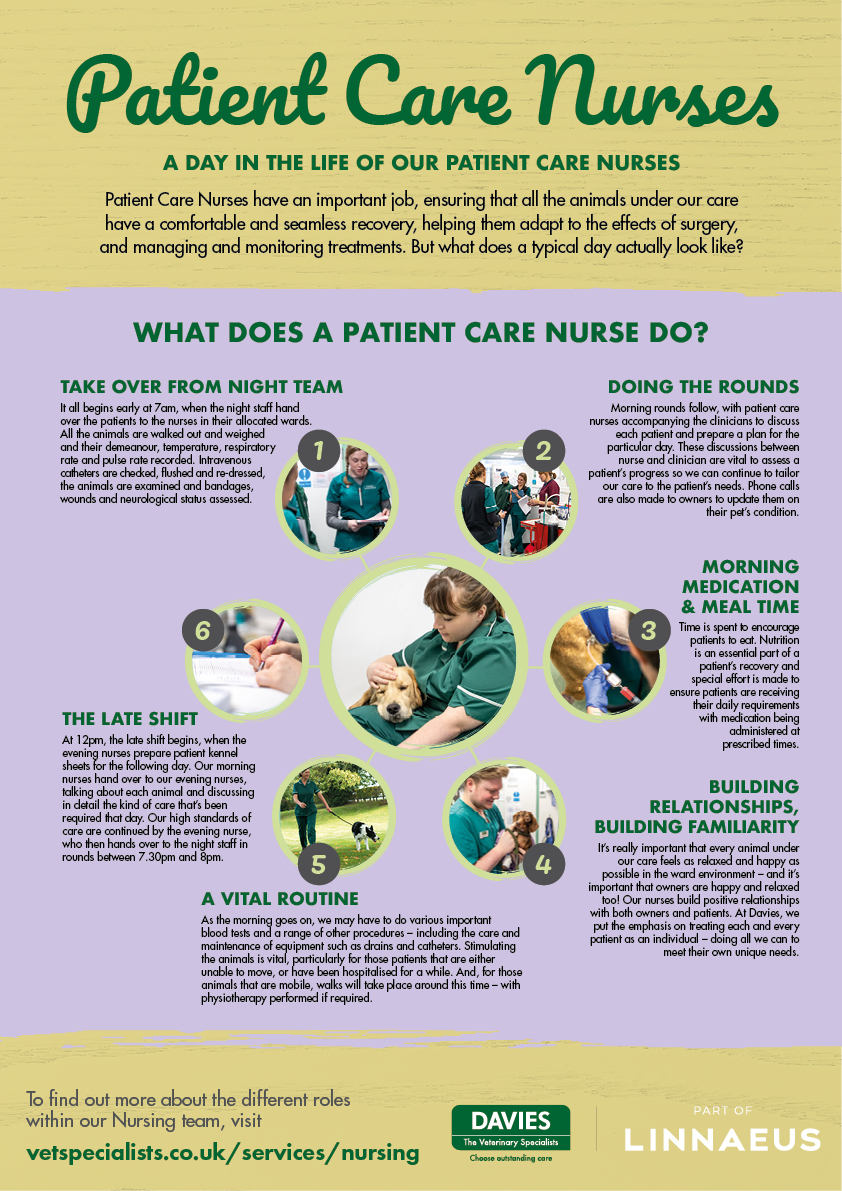 Davies Veterinary Specialists Patient Care Nurse infographic