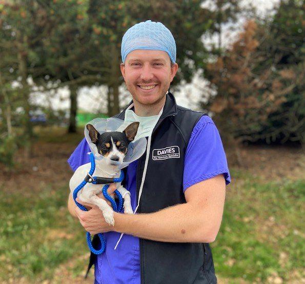 Davies Veterinary Specialists Surgeon Rufus Hammerton and Skip