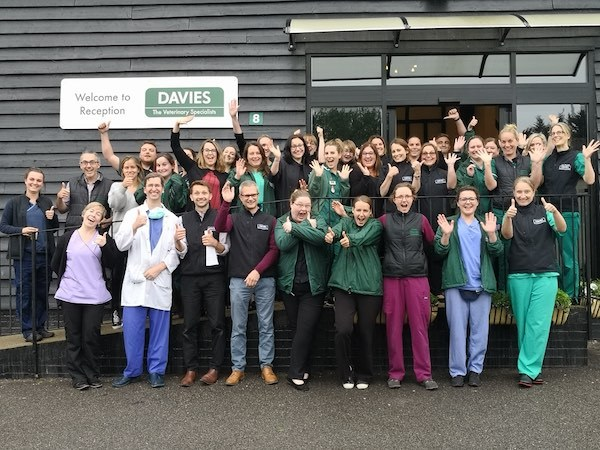 Davies Veterinary Specialists celebrate iiE award 2020 win